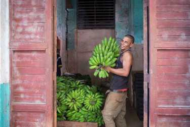 banana-seller