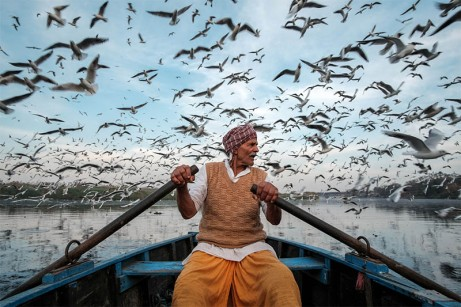 Saurabh Narang_A man who feeds the migratory birds copy
