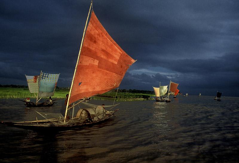 Sailboat Fishing for Ilish